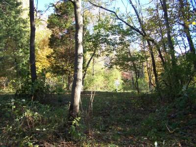Woodsboro Regional Park, Main course, Hole 4 Midrange approach