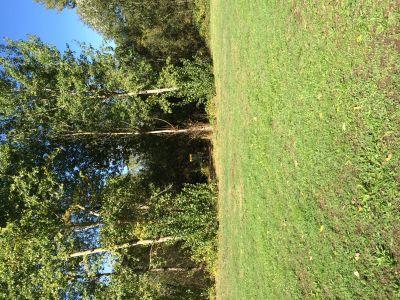 River Front Park, Main course, Hole 2 Short approach