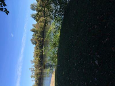 River Front Park, Main course, Hole 1 Putt