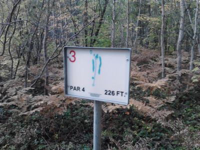 The U.P. Bible Camp DGC, Main course, Hole 3 Hole sign