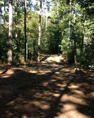 Muldoon Park, Main course, Hole 7 Midrange approach