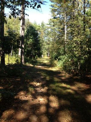 Muldoon Park, Main course, Hole 10 Midrange approach