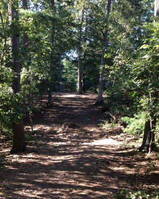 Muldoon Park, Main course, Hole 18 Midrange approach