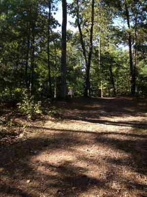 Muldoon Park, Main course, Hole 15 Short approach