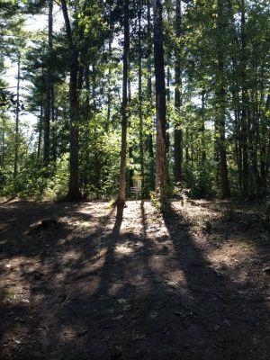 Muldoon Park, Main course, Hole 8 Midrange approach