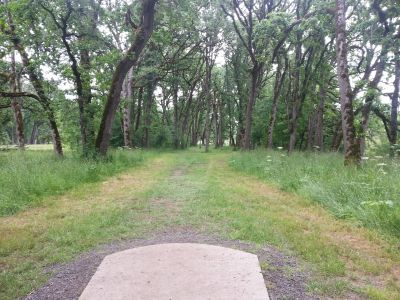 Champoeg State Park, Old Oak Grove, Hole 7 Tee pad