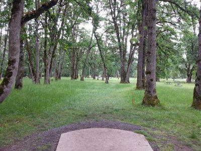 Champoeg State Park, Old Oak Grove, Hole 15 Tee pad