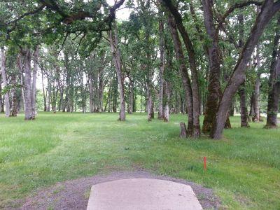 Champoeg State Park, Old Oak Grove, Hole 9 Tee pad