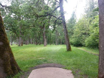 Champoeg State Park, Old Oak Grove, Hole 13 Tee pad
