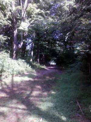 Tamanend Park, Main course, Hole 9 Tee pad