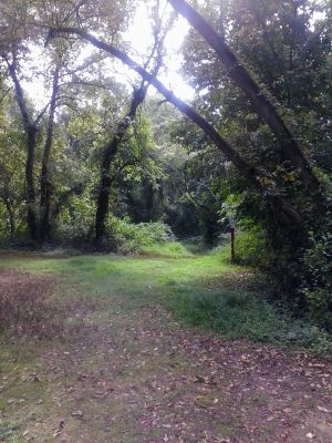 Tamanend Park, Main course, Hole 6 Tee pad