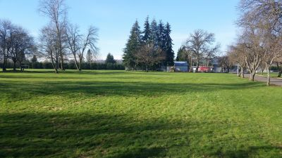 Roy Morse Park, Main course, Hole 3 Tee pad