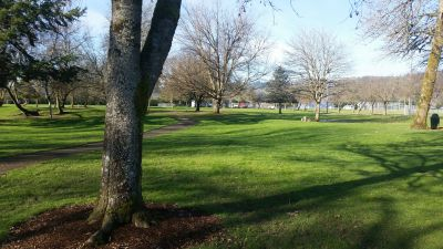 Roy Morse Park, Main course, Hole 1 Tee pad
