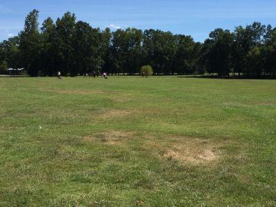 Veterans Park, Main course, Hole 1 Tee pad