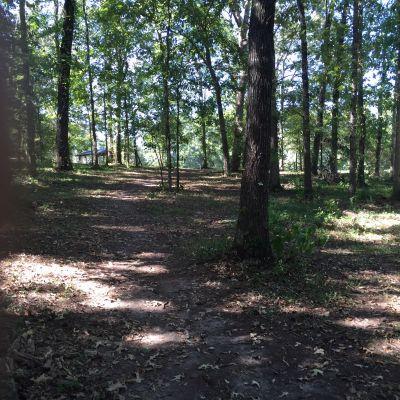 Veterans Park, Main course, Hole 8