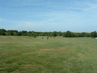 Frank Liske Park, Main course, Hole 1 Tee pad