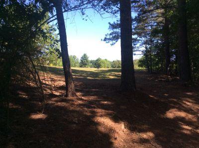 Wyomia Tyus Olympic Park, Main course, Hole 7 Midrange approach
