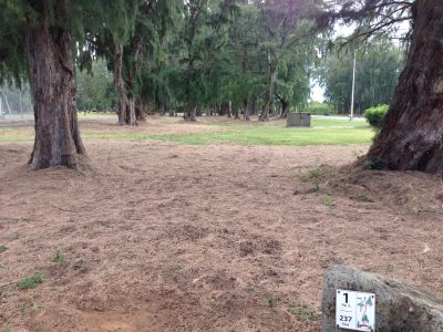 Bellows Field Beach DGC, Main course, Hole 1 Tee pad