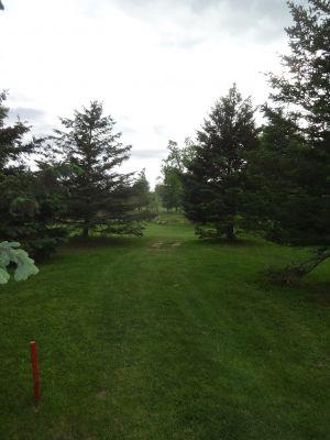 Pine Hills DGC, North course, Hole 17 Tee pad