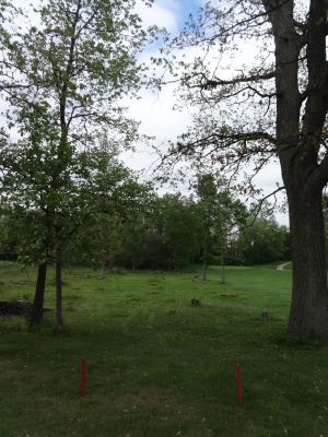 Pine Hills DGC, North course, Hole 8 Tee pad