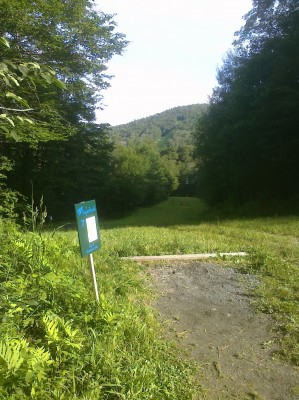 Sugarbush, Base course, Hole 7 Long tee pad
