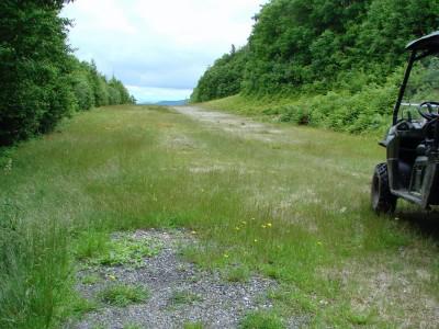 Sugarbush, Peak Course, Hole 7 Long tee pad