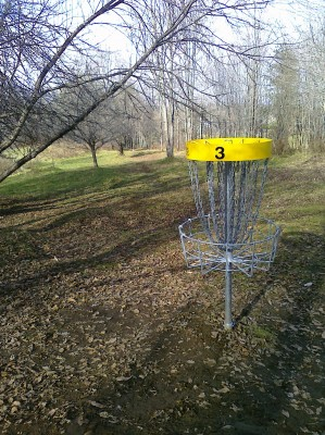 Center Chains, Main course, Hole 3 Reverse (back up the fairway)