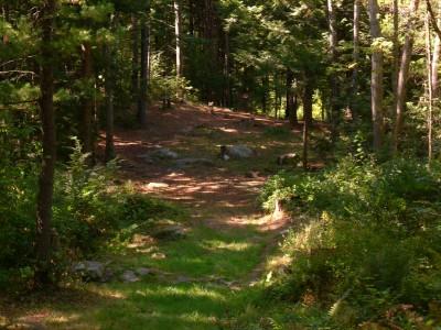 Flatrock, Main course, Hole 11 Long approach