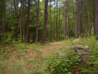 Flatrock, Main course, Hole 4 Long approach