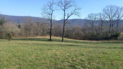 Mountain Cove Farms, Main course, Hole 14 Midrange approach