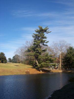 Buffumville Lake, Main course, Hole 17 Short tee pad