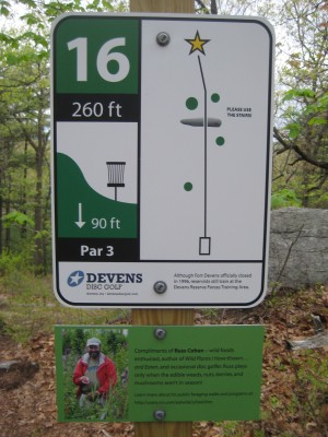 Devens DGC, The Hill, Hole 16 Hole sign