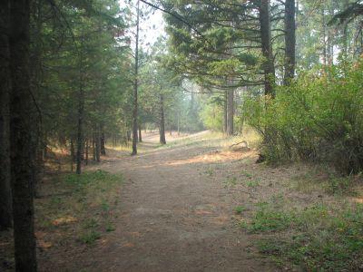 Farragut State Park, A.W.O.L., Hole 18 Tee pad