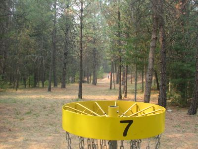 Farragut State Park, A.W.O.L., Hole 7 Reverse (back up the fairway)