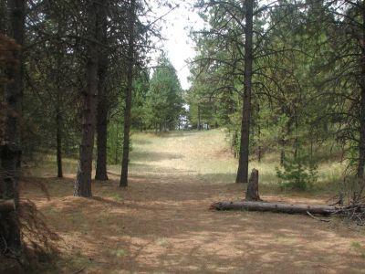 Farragut State Park, A.W.O.L., Hole 3 Tee pad
