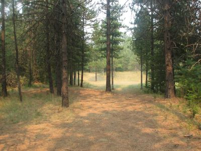 Farragut State Park, A.W.O.L., Hole 8 Tee pad