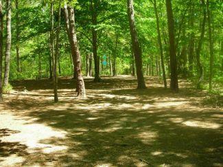 Burgess Park, Main course, Hole 16