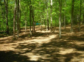 Burgess Park, Main course, Hole 6