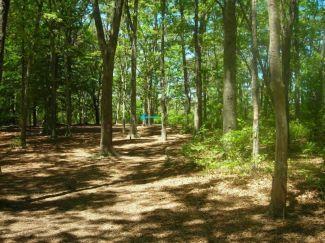 Burgess Park, Main course, Hole 14