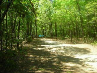 Burgess Park, Main course, Hole 4