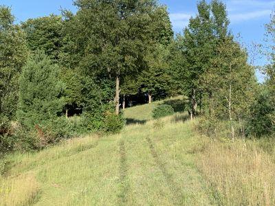 Highland Groves, Main course, Hole 7 Tee pad