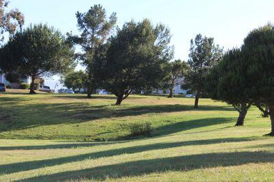 Beattie Park, Main course, Hole 1 Long approach