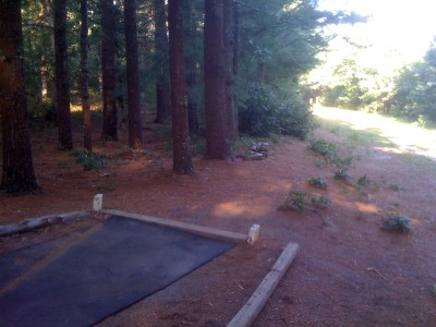 Riverhead Field, Main course, Hole 10 Short tee pad