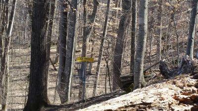 Persimmon RidgePark, Kiwanis DGC, Hole 13 Short approach