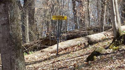 Persimmon RidgePark, Kiwanis DGC, Hole 14 Short approach