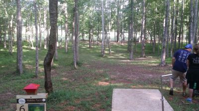 Hole 6 Hobbs Farm Carrollton Ga Disc Golf Courses Disc Golf Scene