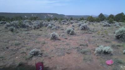 Picuris Pueblo DGC, Main course, Hole 3 Middle tee pad