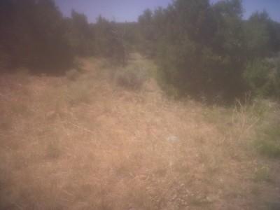 Picuris Pueblo DGC, Main course, Hole 20 Long tee pad