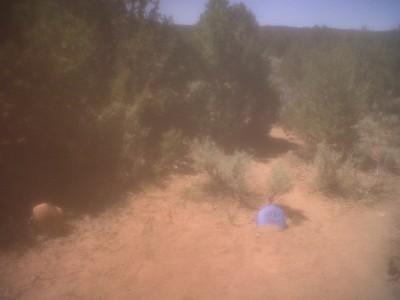 Picuris Pueblo DGC, Main course, Hole 18 Long tee pad