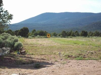 Picuris Pueblo DGC, Main course, Hole 1 Long tee pad